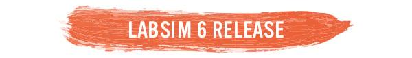 newsletter-section-header LabSim release