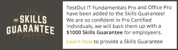skills-guarantee-banner 3